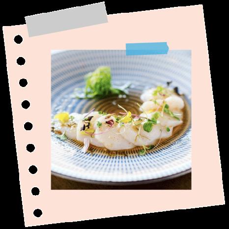 Fésűkagyló Sashimi